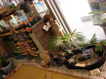 2008.11.10【店舗入り口プチ改装】 (3)