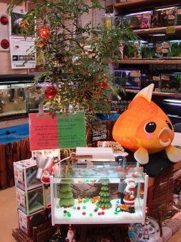 2008.12金魚なクリスマス