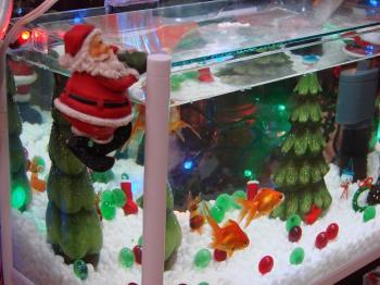2008.12金魚なクリスマス (2)
