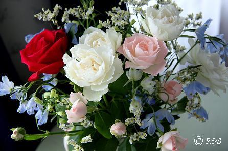 d誕生日の花2IMG_7659