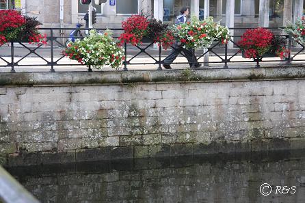 aカンペールー橋の花5IMG_1945