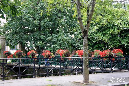 aカンペールー橋の花11IMG_2312