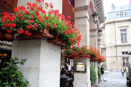 cホテル・ルーブル1IMG_0973