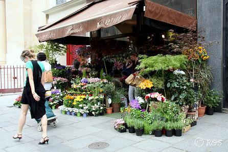 cマレ-街角の花屋1IMG_9150