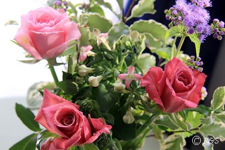 花瓶405IMG_7872