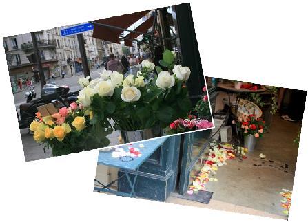 hマレの花25
