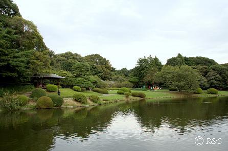 新宿御苑2IMG_5223-1