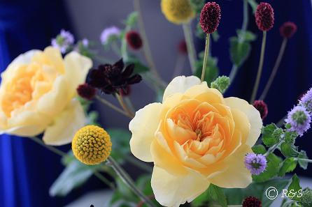 ジャンヌダルクの花瓶18IMG_9047