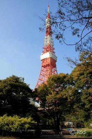 東京タワー2IMG_9235