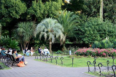 日比谷公園9IMG_9317