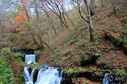 a白糸の滝2IMG_7743