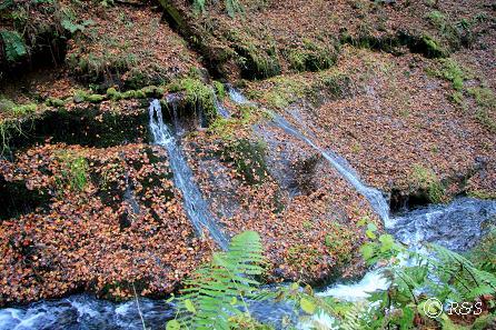 a白糸の滝5IMG_7747