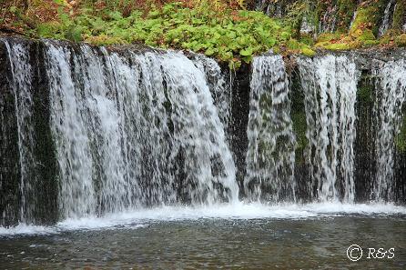 a白糸の滝11IMG_7768