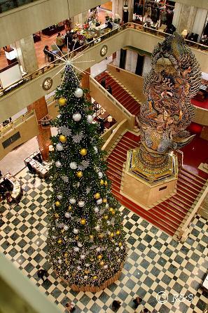 13Mクリスマスツリー3IMG_8894