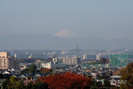 東京の富士IMG_9316