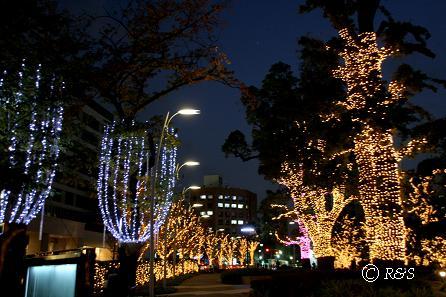 17東京ミッドタウン3IMG_9399