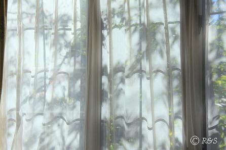 窓からIMG_8847-2