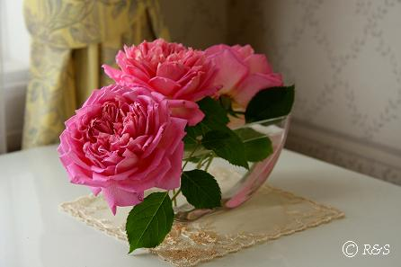 バラの花瓶107IMG_9022