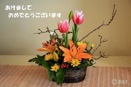 正月の花105