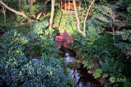 椿山荘4IMG_2075