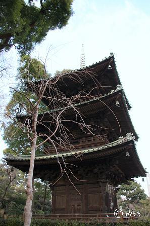 椿山荘5IMG_2099