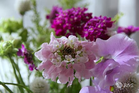 花瓶の花111IMG_2579