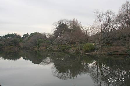 新宿御苑2IMG_3010