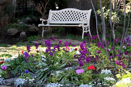 こもれびの庭15IMG_3726