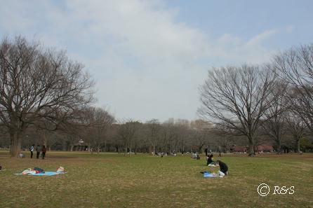代々木公園8IMG_4388