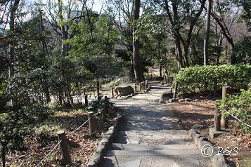 有栖川宮公園25IMG_4614