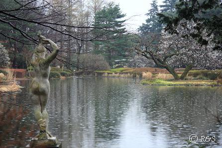 神代植物園-全体7IMG_5333