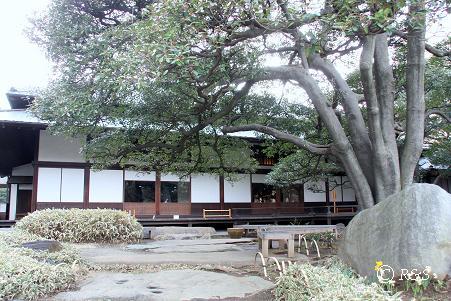 旧岩崎邸17IMG_5725