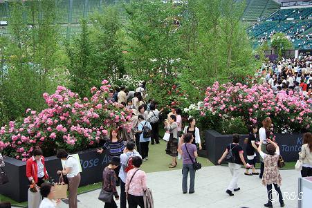 2009国際バラとガーデニングショウ108IMG_5071