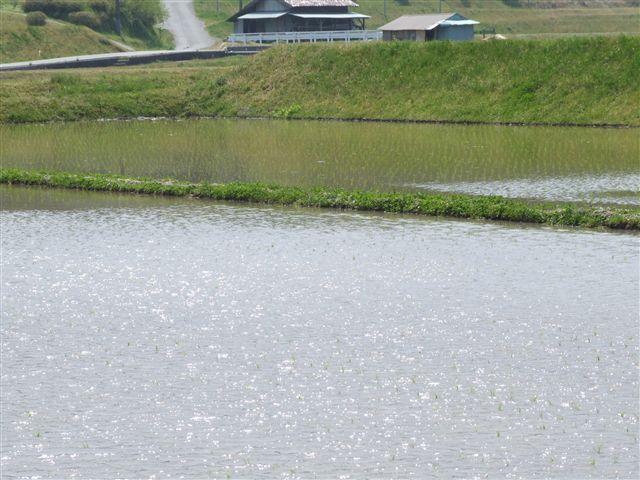 2008_0430浜田の温泉10042_R