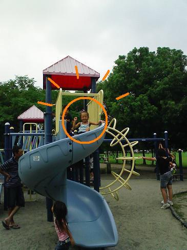 公園年齢適齢期