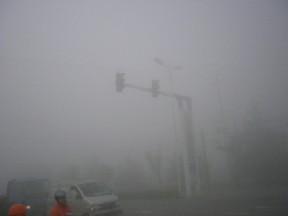 濃霧、信号
