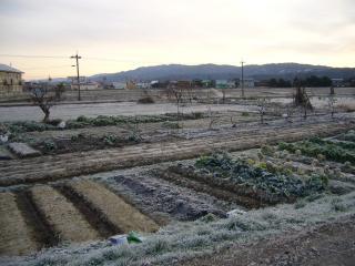 初日の出2007-3(93)