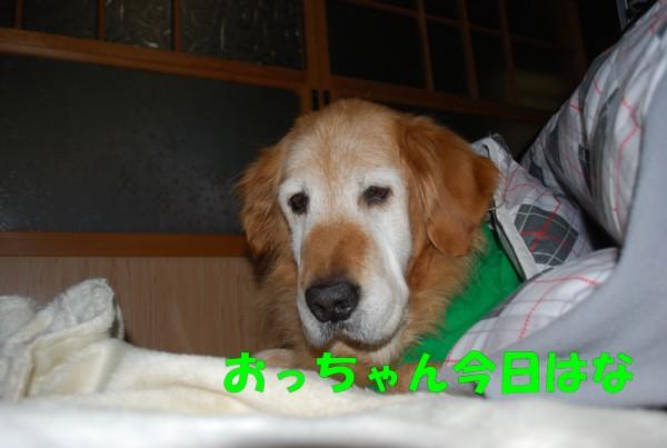 2009.11.22-1