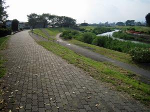 my散歩3