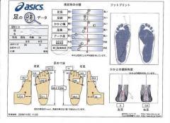 足の解析データ