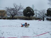 雪で暴れる②