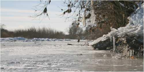 河はびっしりと凍っています。