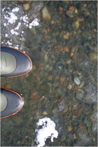 無謀にも氷の上に乗りました