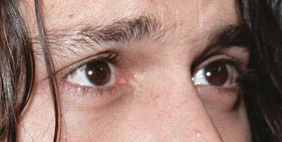 yeux002.jpg