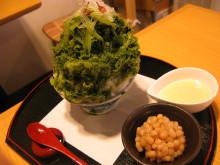 Shimokita (8)