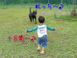 20080815_1.jpg