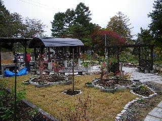 20081026_8.jpg