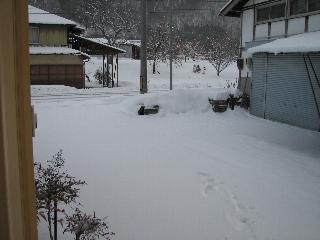 20090113_1.jpg
