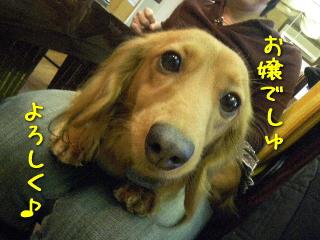 20090131_3.jpg
