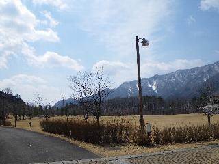 20090405_3.jpg